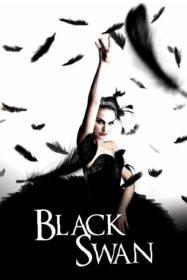 Black Swan แบล็ค สวอน